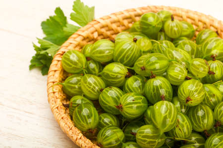 Gooseberries in the bowl with leaf 写真素材 - 97733412