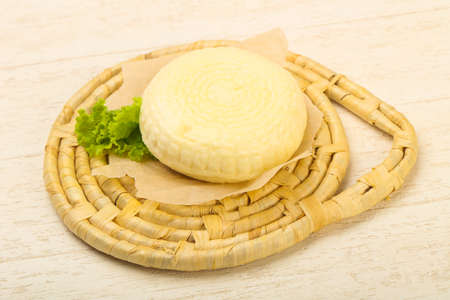 Young caucasian cheese Suluguni