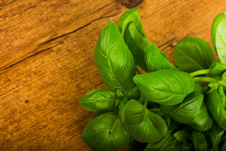 Basil leaves on a wooden table background 写真素材 - 120127397