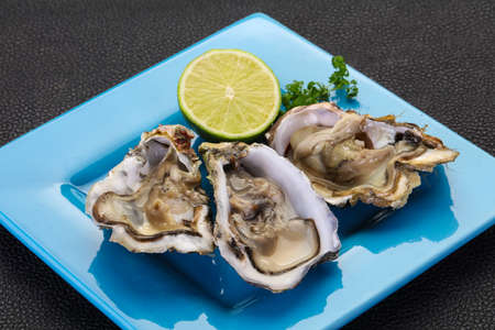 Fresh Oysters with lime and parsley Reklamní fotografie