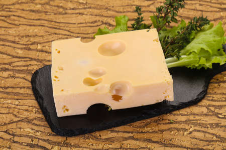 Maasdam cheese brick with thyme branch Reklamní fotografie