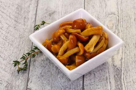 Pickled honey agaric in the bowl served thyme Reklamní fotografie