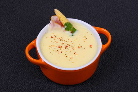 Cheese soup with bacon and spices 写真素材