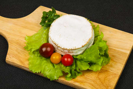 Delicous camembert cheese with salad leaves