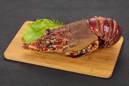 Raw Langust or Tiny Lobster ready for cooking