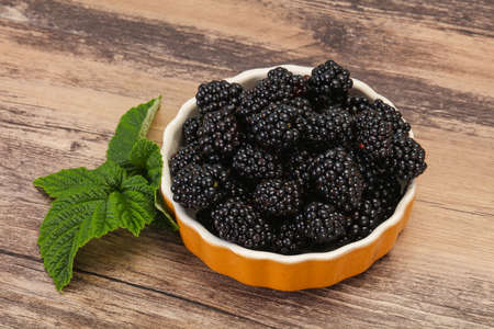 Sweet tasty ripe Blackberry heap with leaf Imagens