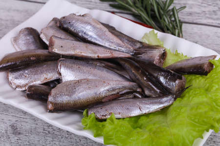 Anchovy fish snack in the bowl served salad leaves and rosemary