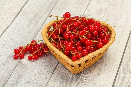 Sweet tasty fresh Red currant berries
