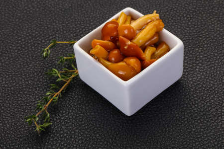 Pickled honey agaric in the bowl served thyme Banco de Imagens - 128602489