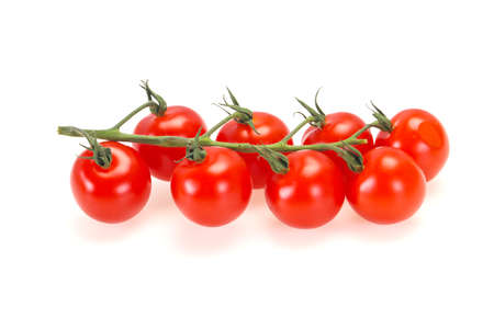 Ripe tasty tomatoes on the branch