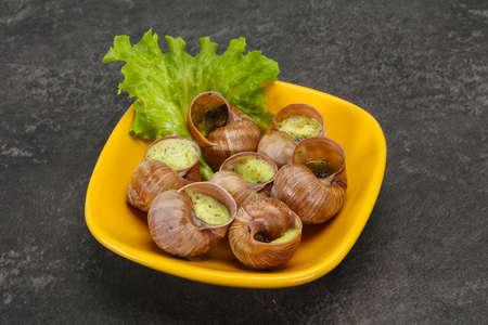 French cuisine - Escargot with butter sauce Zdjęcie Seryjne