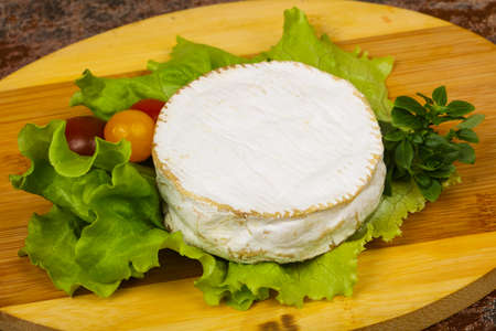 Delicious Camembert cheese with salad leaves Zdjęcie Seryjne