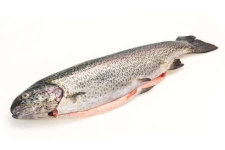 Raw trout fish isolated on white background Stock Photo