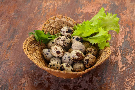 Quail eggs in the basket with herbs