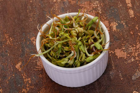 Mash bean sprout in the bowl Stock Photo