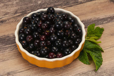Fresh ripe sweet black currant berries