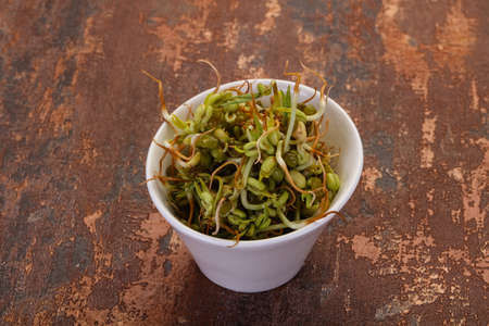Mash bean sprout in the bowl 스톡 콘텐츠