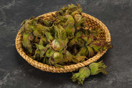 Young Hazel nuts in the basket 스톡 콘텐츠