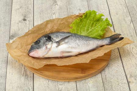 Raw Dorada fish ready for cooking Foto de archivo - 135502741