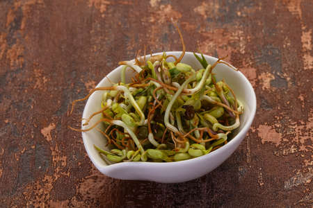 Mash bean sprout in the bowl Stock fotó