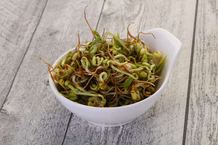 Mash bean sprout in the bowl Stockfoto