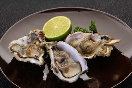 Fresh Oysters with lime and parsley Imagens