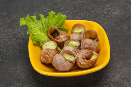 French cuisine - Escargot with butter sauce