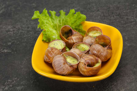 French cuisine - Escargot with butter sauce Фото со стока