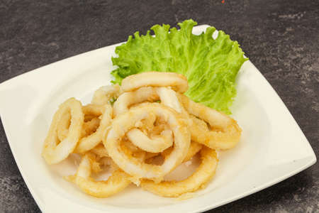 Roasted squid rings with salad in the bowl Archivio Fotografico