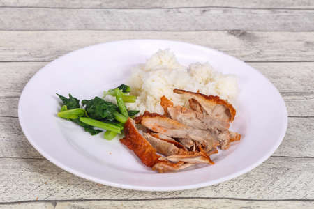 Rice with roasted duck breast and herbs Archivio Fotografico