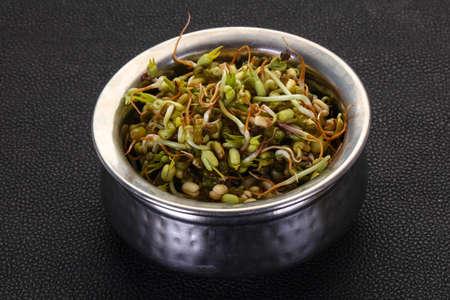 Mash bean sprout in the bowl Foto de archivo