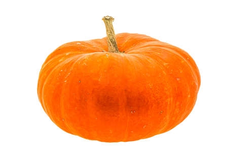 Ripe pumpkin - ready for cooking