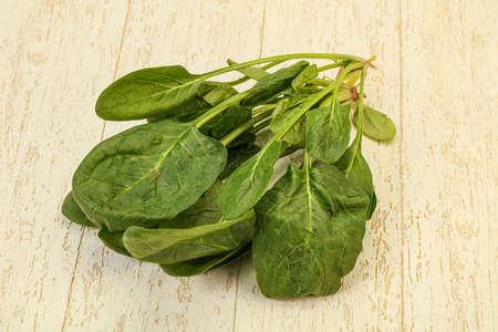 Vegan cuisine - Fresh green Spinach leaves heap