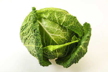 Organic Savoy Cabbage dietary for cooking