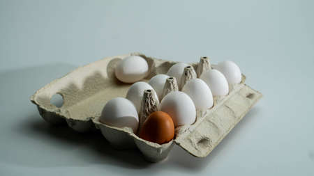 Chicken eggs in the tray. Dark egg took the place of the light Stockfoto