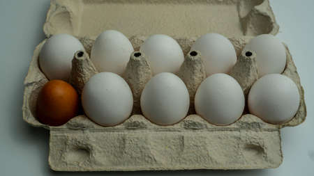 Many white eggs in the tray. One dark egg between them. Top view angle shot. Stockfoto