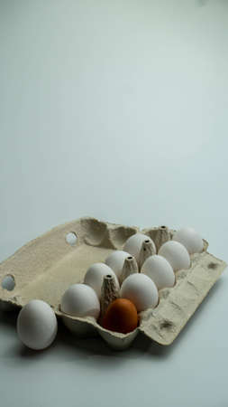 Chicken eggs in a tray. One egg is different collor. Stockfoto