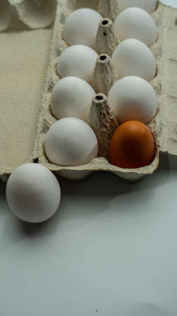 Chicken eggs in a tray. One alien egg instead of white egg. Stockfoto