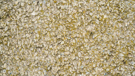 View from above. Background natural gray granite crushed stone, macadam. Macro photo of texture of broken stone or rubble with place for text Archivio Fotografico - 148796664