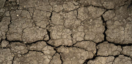 Dry soil land texture on the ground. drought, cracked earth in gray. earth without rain. background.