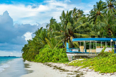 Tropical pristine beach with coconut palm and turquoise water, Maldives travel destination
