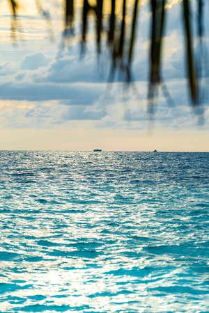 Dominican republic. paradise on earth. resort holidays. palm trees. sand. the sun Archivio Fotografico