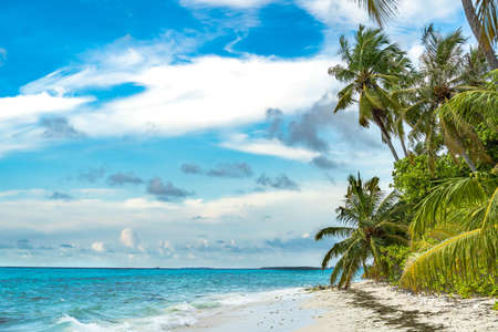 The amazing wild beach of the island of Saona in the Atlantic Ocean. Azure Caribbean Sea and palm trees. Palm shadow on the white sand. Fishing boat on the waves of the Caribbean. Palms island beach. Archivio Fotografico