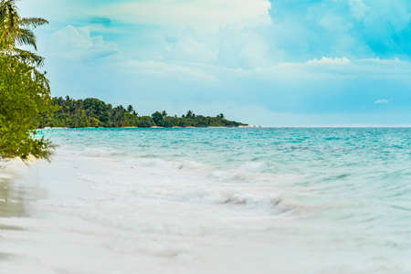 Panoramic view of a tropical beach with palm trees, turquoise waters and blue sky in the Maldives, Indian Ocean