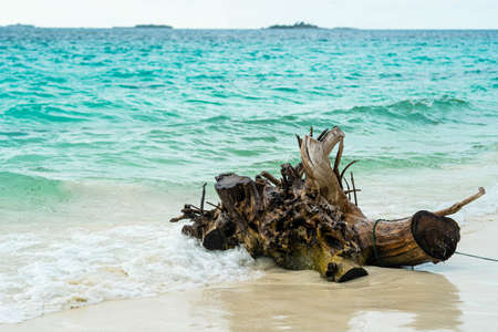 Dominican republic beaches, island beach, The best beaches in the world Beautiful palm trees on the shore of the blue sea. Atlantic Ocean, the beaches of Punta Cana. Caribbean turquoise sea water