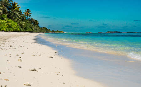 Caribbean beach background. Sunny tropical beach. Hot afternoon on an empty beach. The best beaches in the world. Dominican Republic beaches.