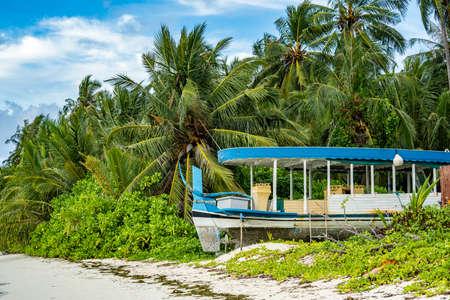 Tropical pristine beach with coconut palm and turquoise water, Caribbian island travel destination Archivio Fotografico