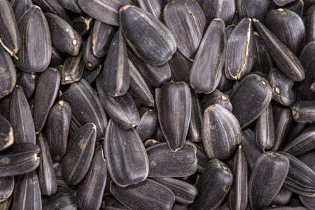 overhand: food background from black seeds of sunflower closeup Stock Photo