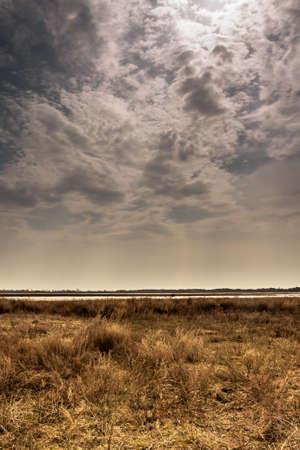 moody sky: dried field with moody sky before coming rain
