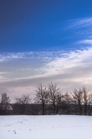 Winter rural landscape with snow trees on horizon and dramatic sky during twilight